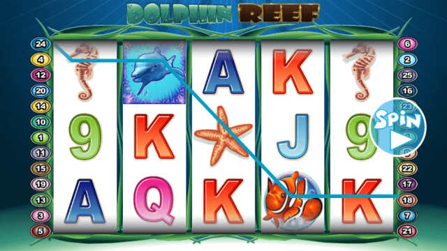 Dolphin Reef 6